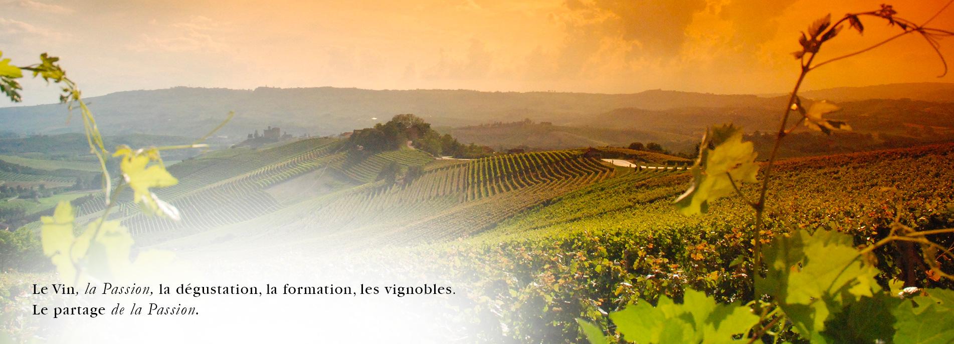 La_Cristallerie_Selection_de_Vins